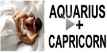 Aquarius + Capricorn Compatibility