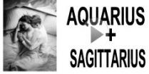 Aquarius + Sagittarius Compatibility