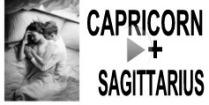 Capricorn + Sagittarius Compatibility