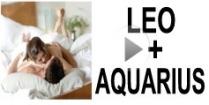 Leo + Aquarius Compatibility