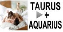 Taurus + Aquarius Compatibility